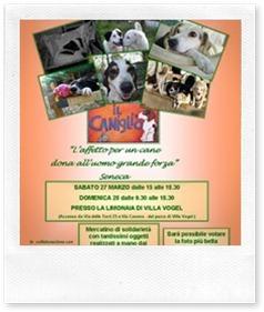 Mostra di scrapbooking e fotografia per aiutare i cagnolini
