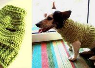 Maglione per cani modello King, nuovo pattern