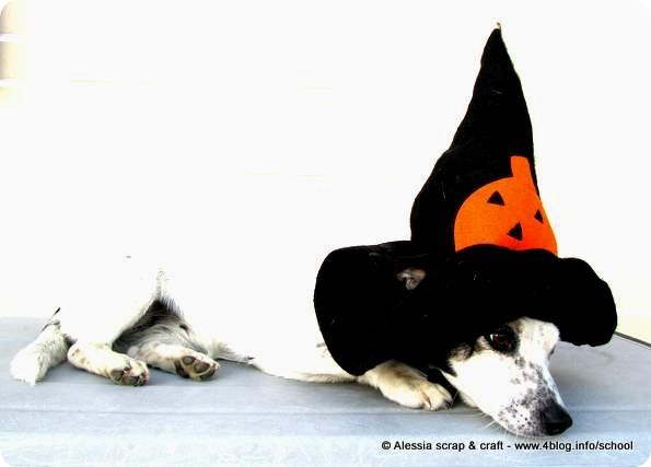 Maschera di Halloween per la nostra cagnolina