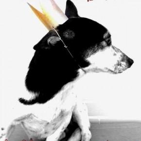 Buon anno nuovo, buon 2012!
