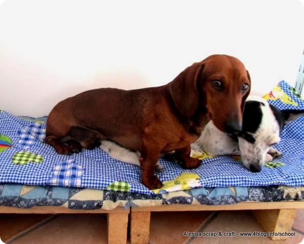 Una cuccia fatta in casa per cani bassotti