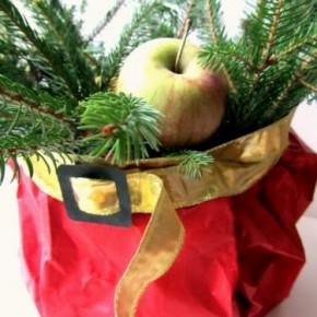 Countdown Natale: centrotavola di babbo Natale con abete e mele selvatiche