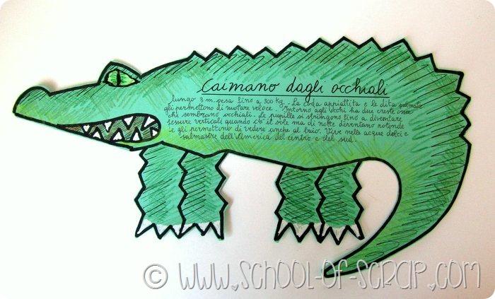 Scuola primaria: animali vertebrati il caimano