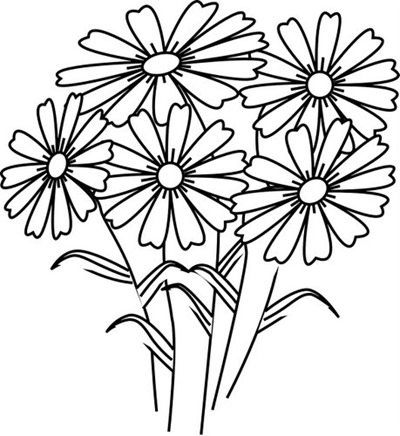 disegni da colorare margherite