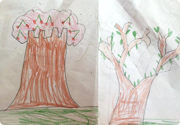 Sai disegnare un albero_Ce lo insegna Bruno Munari!