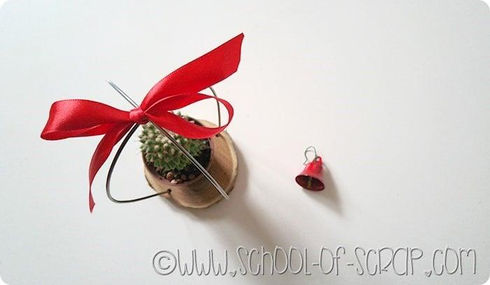 Cactus-natale-6