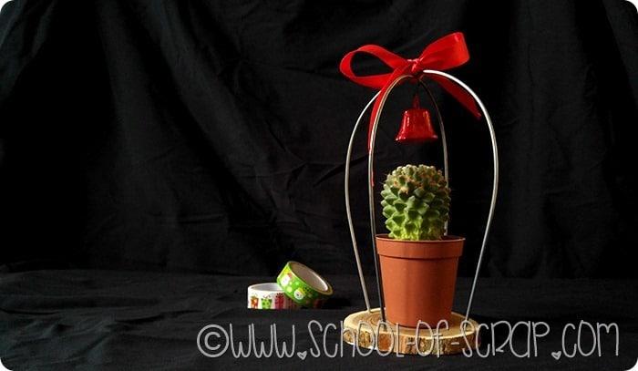 Cactus-natale-7