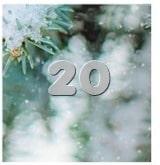 Calendario dell'avvento 2017
