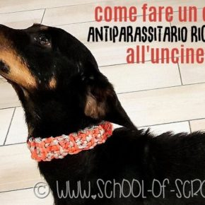 Come fare un collare antiparassitario naturale con l'uncinetto