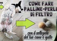 Non solo Uncinetto: tutorial palline di feltro con sottopelo del tuo cane o gatto