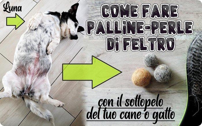 Come fare palline perle di feltro con il sotto pelo del tuo cane o gatto